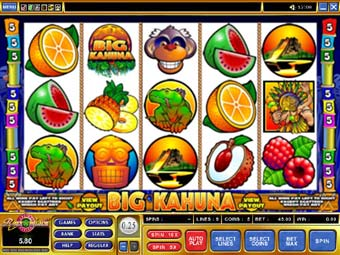 Big Kahuna Slot Screenshot